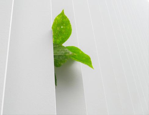 Audyt ekologiczny jako wstęp do optymalizacji